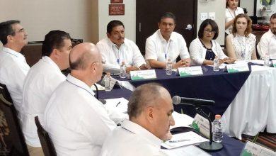 Cárdenas Navarro expuso que en Michoacán desde el año 2009 la Constitución reconoce el derecho a la gratuidad de la educación hasta el nivel superior