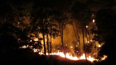 Debido al incendio se ha extendido una columna de humo por la zona centro de la ciudad